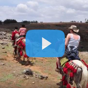 Tadele Travel Video